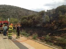 El fuego se inició junto a un paseo.