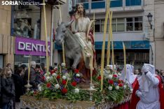 Domingo de Ramos. Freddy Páez