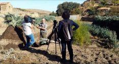 Isabelo Aroz muestra el cultivo del cardo./SN