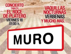 muro_ok