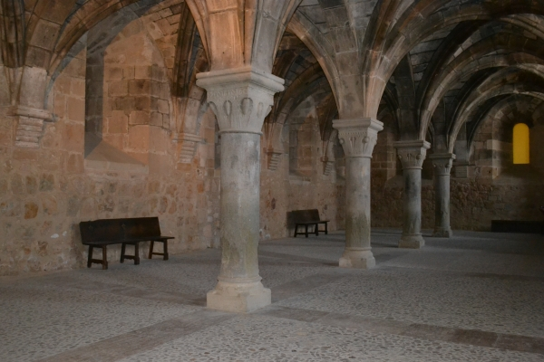 Siguiendo las huellas del Cid por Arcos de Jalón | Imagen 1