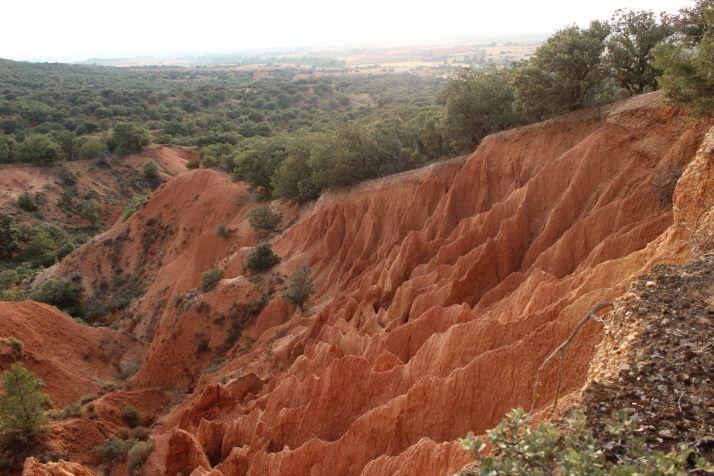 Ruta: La Ribera del Duero y sus encantos  | Imagen 2