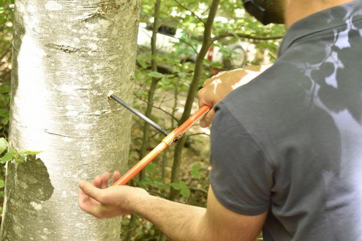 Técnica de barrena