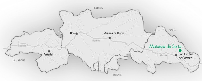 Ana Carazo: valiente apuesta por la Ribera soriana   Imagen 2